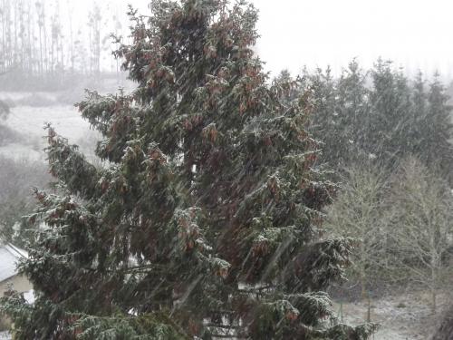 hiver,neige